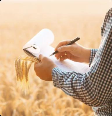 Expert agricole évaluant l'incidence d'un sinistre récolte